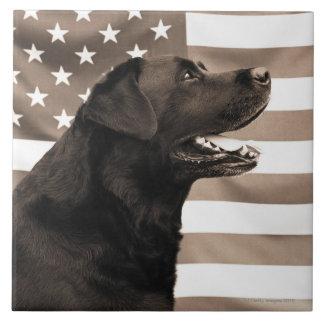 犬および米国旗 タイル