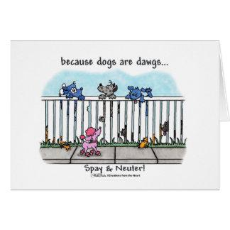 犬がDawgsであるので カード