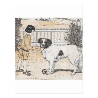 犬に球があります ポストカード