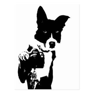 犬のカメラマン ポストカード