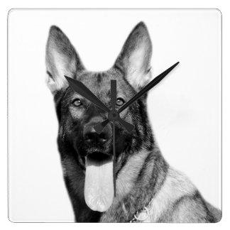 犬のジャーマン・シェパード動物ペット写真の白黒 スクエア壁時計