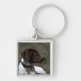 犬の写真 キーホルダー