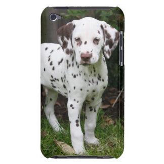 犬の子犬のipod touch Dalmatian 4Gの場合、ギフトのアイディア Case-Mate iPod Touch ケース