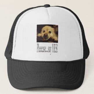 犬の弁護 キャップ