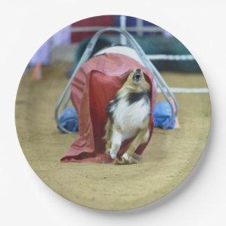 犬の敏捷シュートから出ているシェットランド・シープドッグ ペーパープレート