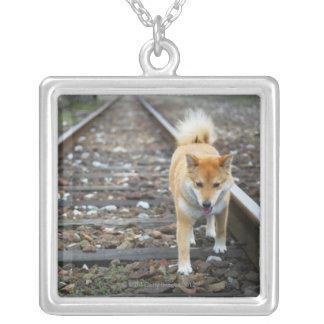 犬の歩くトラック シルバープレートネックレス