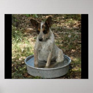犬の理性的 ポスター