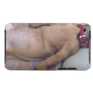 犬の胃 Case-Mate iPod TOUCH ケース