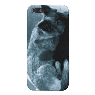 犬の電話カバー iPhone 5 COVER