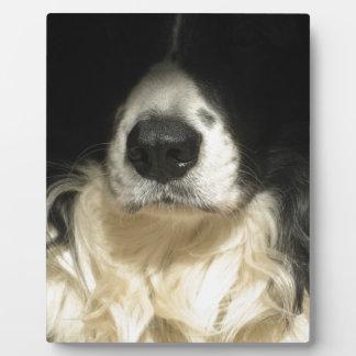 犬の鼻の終わり フォトプラーク