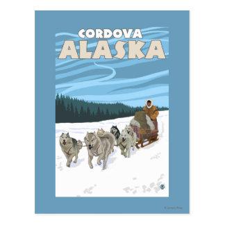 犬のSledding場面- Cordova、アラスカ ポストカード