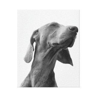 犬を夢を見ること キャンバスプリント