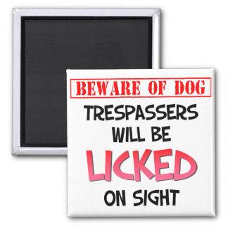 犬を舐めることの(白い) 2インチの正方形の磁石用心して下さい マグネット