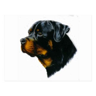 犬ロットワイラー ポストカード