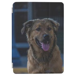 犬年 iPad PROカバー