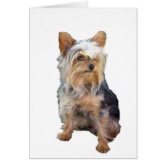 犬4   メッセージカード カード