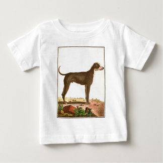 犬-グレートデーン ベビーTシャツ