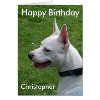 (犬)スタッフォードのブルテリアのハッピーバースデー カード