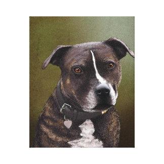 (犬)スタッフォードテリア キャンバスプリント