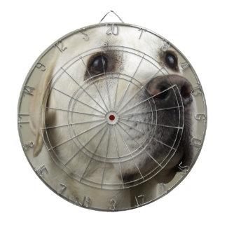 犬 ダーツボード