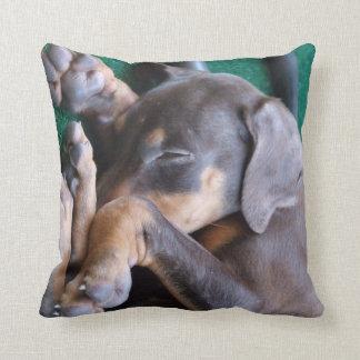 (犬)ドーベルマン・ピンシェルの子犬の枕 クッション
