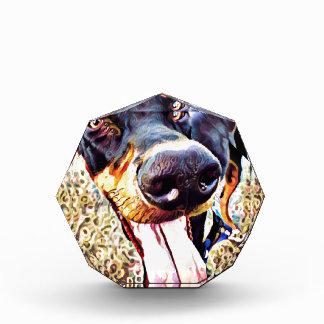 (犬)ドーベルマン・ピンシェルの渦巻のペンキ1 表彰盾