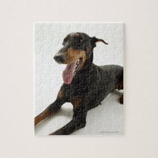 (犬)ドーベルマン・ピンシェル2 ジグソーパズル