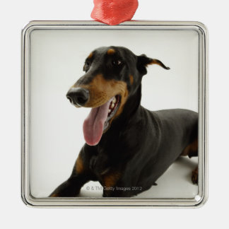 (犬)ドーベルマン・ピンシェル2 メタルオーナメント