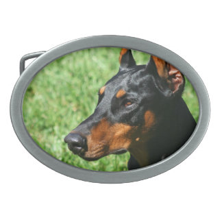 (犬)ドーベルマン・ピンシェル 卵形バックル