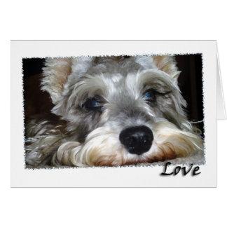 犬: 小型ドイツのシュナウツァーw/Love カード