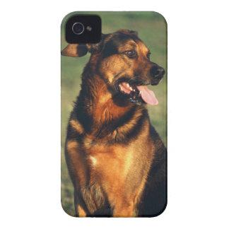 犬 Case-Mate iPhone 4 ケース