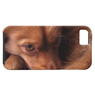 犬 iPhone SE/5/5s ケース