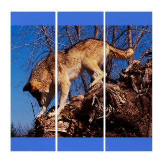 狩りのオオカミ トリプティカ