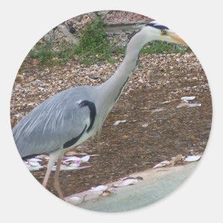 狩りの鷲 ラウンドシール