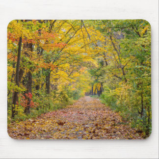 独立州立公園の秋色 マウスパッド