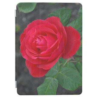 独身ので赤いバラ iPad AIR カバー