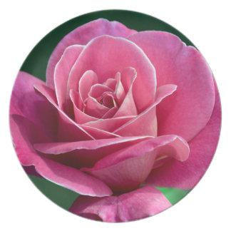 独身のなピンクのバラのプリントのメラミンプレート プレート