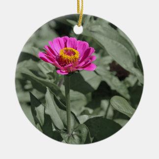 独身のなピンクの《植物》百日草の花 陶器製丸型オーナメント