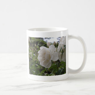 独身のな白いバラ コーヒーマグカップ