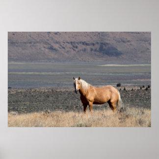独身のな野生の馬は単独で立ちます ポスター