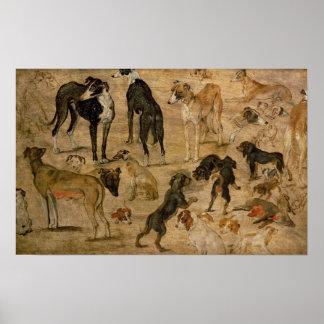 猟犬の勉強、1616年 ポスター