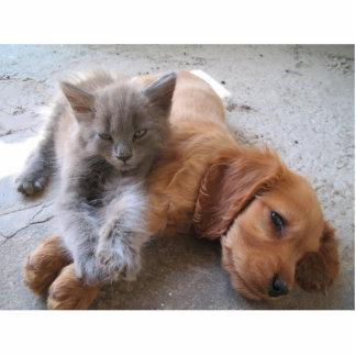 猫および犬の友情のフォトスカルプチャー 写真彫刻キーホルダー