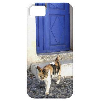 猫および青いドア iPhone SE/5/5s ケース