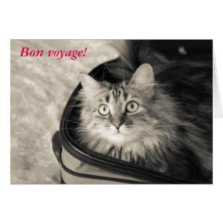 猫が付いている餞別カード カード