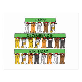 猫が祝う12月11日の誕生日 ポストカード