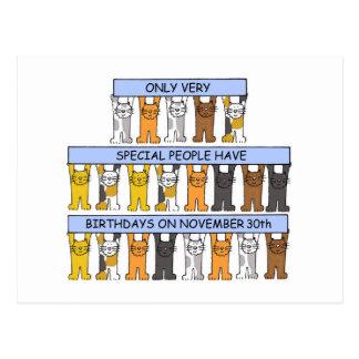 猫との11月30日の誕生日 ポストカード