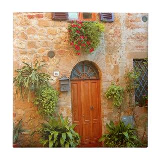 猫によってはPienza、イタリアで家へ帰るように入口が努めます タイル