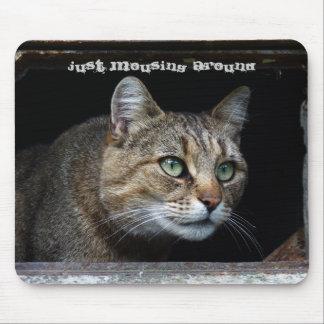 猫のまわりのちょうどMousing マウスパッド