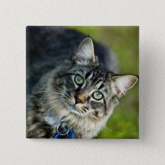 猫のアウトドアのポートレート 5.1CM 正方形バッジ