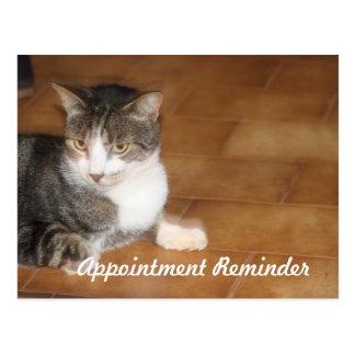 猫のアポイントメントのメモ ポストカード
